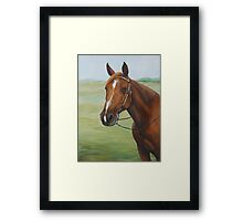 Quarter Horse Portrait Framed Print