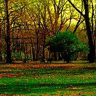 Goodbye Autumn by Marie Sharp