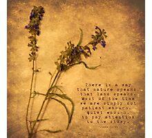 Nature Speaks Photographic Print