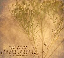 Study Nature by Tia Allor-Bailey
