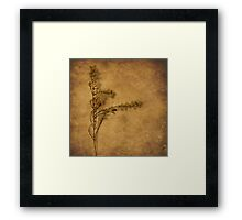 Weeds (without words) Framed Print