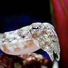 cuttlefish by sara montour
