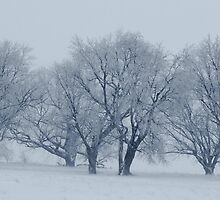The Brink of the Fog by Atreju Hood