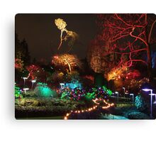 Night in the Sunken Garden (3) Canvas Print