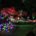 Night in the Sunken Garden (4) by George Cousins