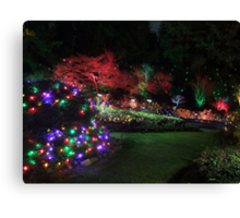 Night in the Sunken Garden (4) Canvas Print