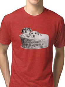 Basket of Joy T-Shirt Tri-blend T-Shirt