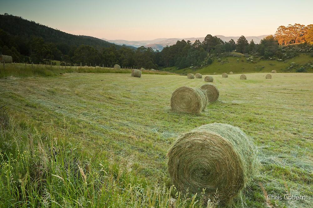 Hay Bales at Vinces Saddle by Chris Cobern