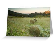 Hay Bales at Vinces Saddle Greeting Card