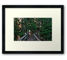Cypress Pier Framed Print