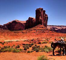 Saddle em' up ! by Nancy Richard