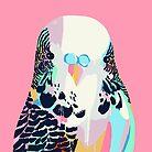 Budgerigar Pink by Tim Mane
