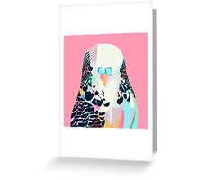 Budgerigar Pink Greeting Card