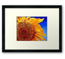 Backlit Sunflower Framed Print