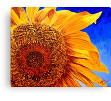 Backlit Sunflower Canvas Print