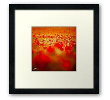Rouge Framed Print