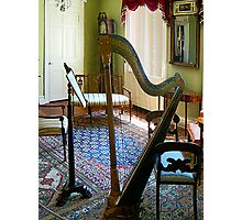 Harp in Living Room Photographic Print