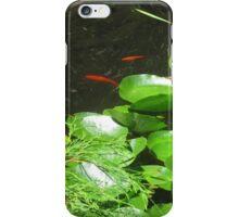 Fish Pond iPhone Case/Skin