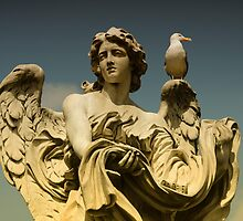 angel and bird by dasar