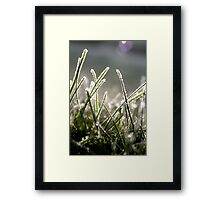 frosted blades Framed Print
