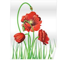 Poppy with Grass 2 Poster