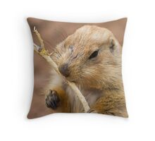 Snack on a Stick Throw Pillow