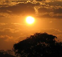 Brazilian Sunset by Erika Ribeiro
