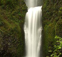 Multnomah Falls, Oregon by Chesil