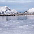 Lochan na Ais by Christopher Cullen