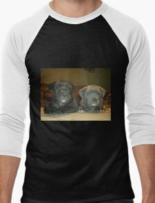 pit bull babies Men's Baseball ¾ T-Shirt