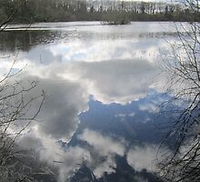 Mirror the Sky: Landscape in Water by shoelock