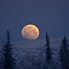 Blue Moon Over The Mat-Su  by Rick & Deb Larson