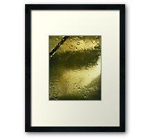 Precious Gold Framed Print