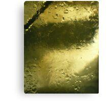 Precious Gold Canvas Print