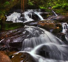Triplet Falls - Otways N.P. by Mark Shean