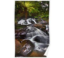 Triplet Falls - Otways N.P. Poster