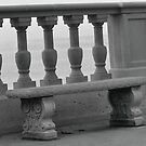 PVE Bench B&W by Walt Conklin