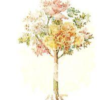 A Summer Tree - Digital Art  by avalonmedia