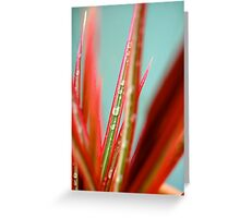 Wet Plant Greeting Card