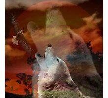 SONGS OF PRAYERS Photographic Print