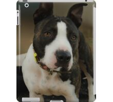 PRECIOUS PITBULL iPad Case/Skin