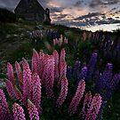 Sundown on the Shepherd by Robert Mullner