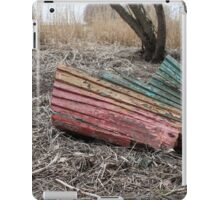 after  shipwreck iPad Case/Skin