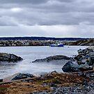 Blue Rocks-Tiny Harbour (1) by Jann Ashworth