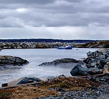 Blue Rocks-Tiny Harbour (1) by Jann Ashworth