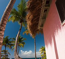 an amazing Dominican Republic