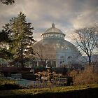 Botanical Gardens In Winter - Bronx, New York © 2009  by Jack McCabe