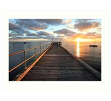 Morning Glory, Mornington Peninsula, Australia Art Print