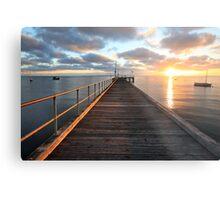 Morning Glory, Mornington Peninsula, Australia Metal Print