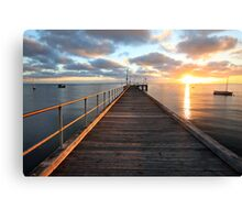 Morning Glory, Mornington Peninsula, Australia Canvas Print
